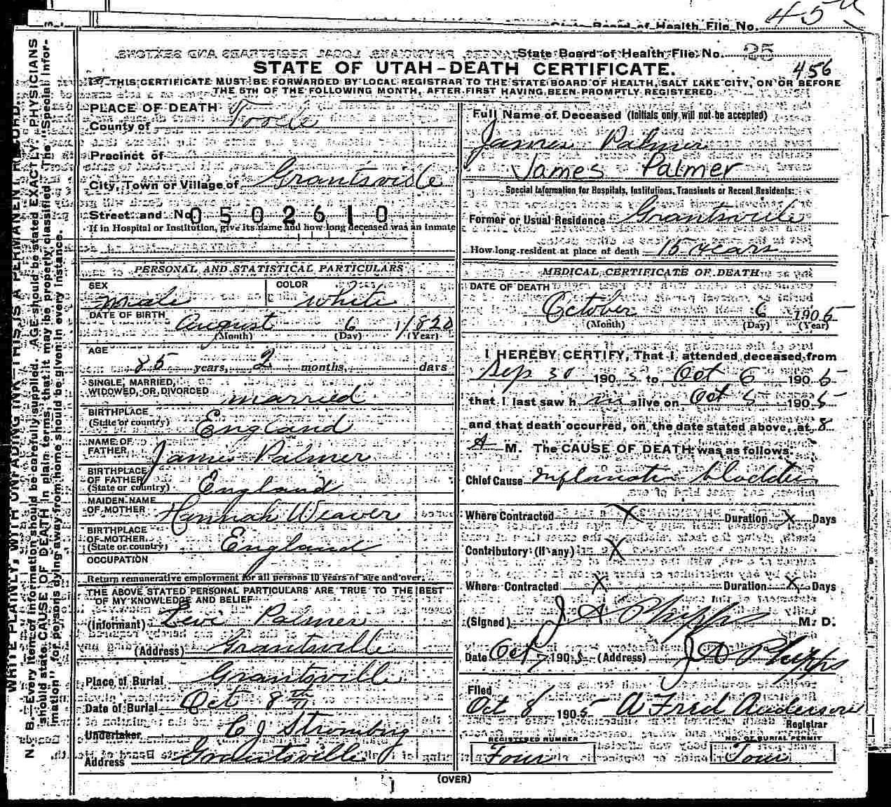 Documents James Palmer 1820 1905 Death Certificate The Watson